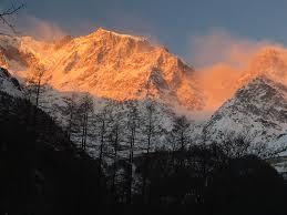 Paesaggio alpino, montagna innevata, colore rosa. foresta alpina.