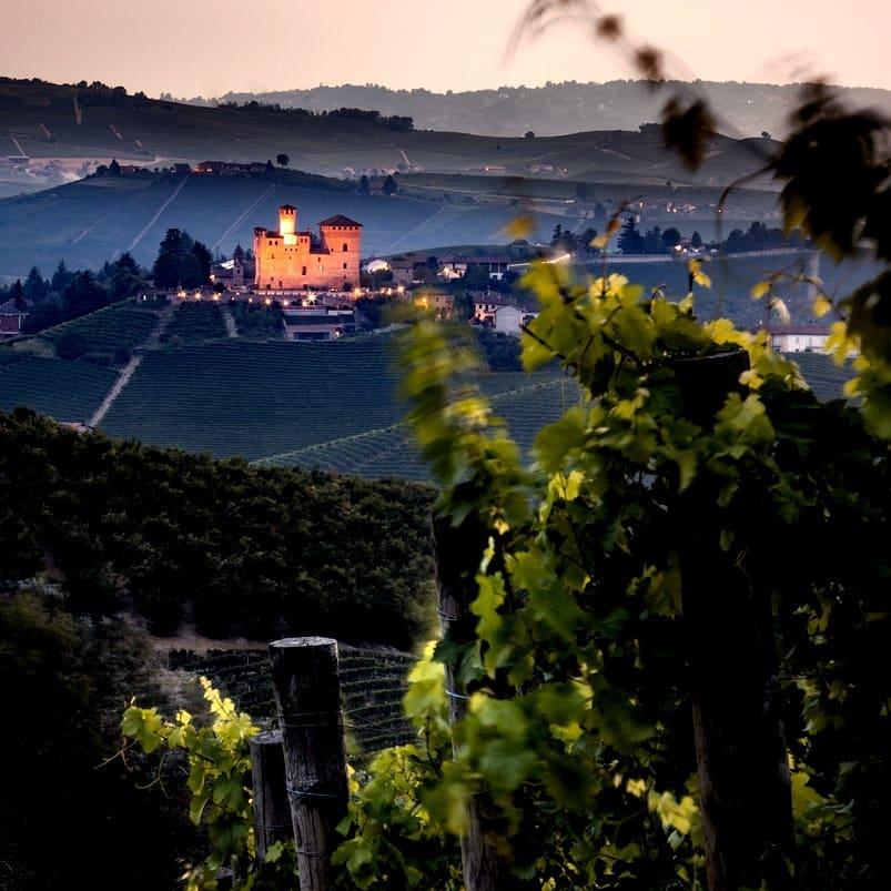 Castello medioevale di grinzane cavour . area unesco. vista da una vigna la campagna vitivinicola sottostante. castello illuminato all'imbrunire